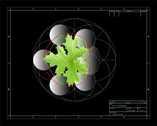 相似象解析2.jpg